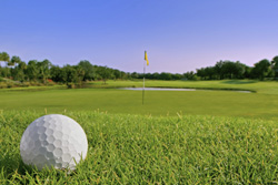 Play golf!
